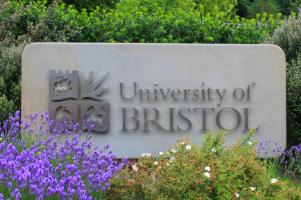 Bristol University:  Gebruik vitamines en linolzuur om corona covid19 te bestrijden
